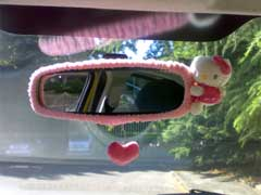 Rear View Mirror Accessories